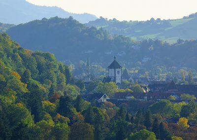 Freiburg im Herbst, von der Eichhalde aus gesehen.
