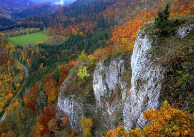 Eichfelsen im Donautal