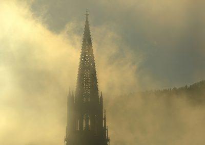 Tagesintro über Freiburg im Herbst